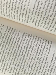 Excerpt chapter 17