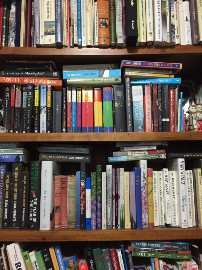 Multiple varied books stacked on shelves
